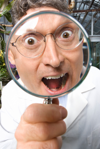 Get out the magnifying glass.